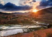 Zonsondergang rijstvelden - Madagaskar - foto: archief
