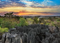 Tsingy de Bemaraha 1 - Tsingy de Bemaraha - Madagaskar - foto: archief