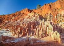 Tsingy - Tsingy - Madagaskar - foto: archief