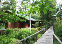 loopbrug Bilit Adventure Lodge - Bilit Adventure Lodge - Maleisië
