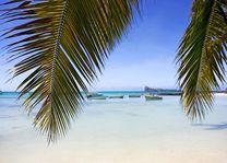 uitzicht Coin de Mire - Mauritius - foto: Tourism Board Mauritius