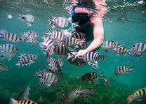 snorkelen - Mauritius - foto: Tourism Board Mauritius