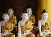 Boedha's in Shwedagon Pagode - Yangon - Myanmar