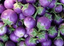 aubergines markt - Myanmar - foto: Berry ter Horst