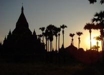 tempel palm ondergaande zon - Bagan - Myanmar