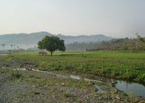 omgeving Mindat - Mindat - Myanmar - foto: lokale agent