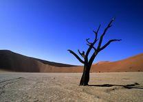 sossusvlei duin - Sossusvlei - Namibië
