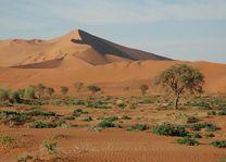 Duinen - Sossusvlei - Namibië