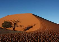 duinen Sossusvlei - Sossusvlei - Namibië - foto: Martijn Visscher