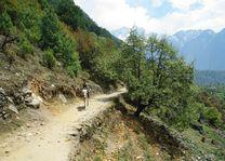 trek tussen Monjo en Lukla - Nepal - foto: Archief