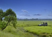 jeepsafari in het Chitwan National Park (2) - Chitwan National Park - Nepal - foto: Barahi Jungle Lodge