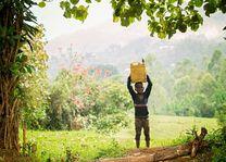 Oegandees jongetje met jerrycan in Bwindi - Bwindi - Oeganda - foto: Robert van Hall