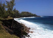 Sud sauvage/zuidkust - Reunion - Réunion