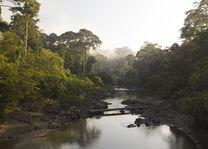 rivier - Danum Valley - Borneo - Maleisië - foto: flickr