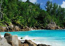 Strand met begroeiing - Seychellen - foto: Seychelles Tourist Office