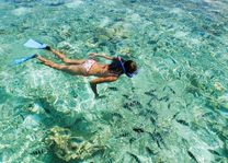 Snorkelende vrouw - Seychellen - foto: Seychelles Tourist Office