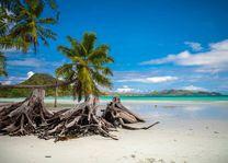 Cote d'Or Beach - Cote d'Or Beach - Seychellen - foto: Archief