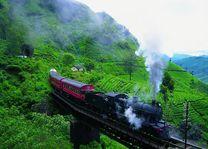 Treinreis peradeniya - nanu oya - Nuwara Eliya - Sri Lanka