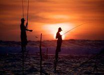 paalvissers tijdens zonsondergang - Galle - Sri Lanka
