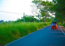 Rode Tuk-Tuk op de weg van Sri Lanka - Sri Lanka - foto: Archief