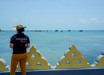 zee bij Jaffna met PANGEA logo - Jaffna - Sri Lanka - foto: Nadina Perera