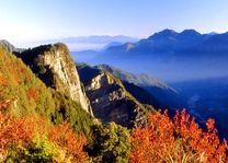 Uizicht in Alishan - Alishan - Taiwan