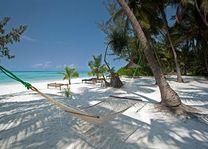 strand - Pongwe Beach Resort - Zanzibar - Tanzania