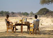 Bush lunch - Ruaha River Lodge - Tanzania