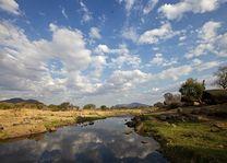 Uitzicht op de Ruaha Rivier - Ruaha Rivier Lodge - Tanzania - foto: Niels van Gijn - Foxes Safari Camps