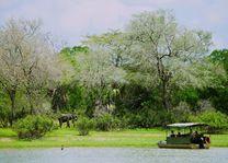 Bootsafari op de river - Rufiji River Camp - Tanzania