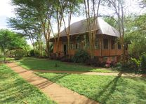 Eileen's Trees Inn - Eileen's Trees Inn - Tanzania - foto: lokale agent