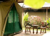 tent - Elephant Hills - Khao Sok - Thailand