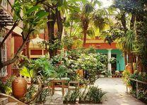tuin - Ranjit's Svaasa - Amritsar - India