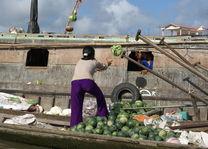 Vietnam - Mekong Delta - vrouw gooit groente op drijvende markt - foto: Daniel de Gruiter