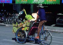 cyclo - Hanoi - Vietnam