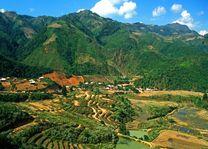 rijstvelden en bergen in Sapa Valley - Sapa Valley - Vietnam