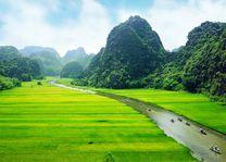 Rijstvelden, Ninhbinh - Vietnam - foto: Archief