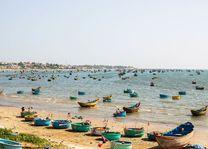 Veel vissersbootjes, Mui Ne - Vietnam
