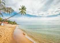 Palmboom met strand, Phu Quoc - Vietnam - foto: Archief
