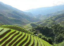 Rijstterrassen van Mu Cang Chai (4) - Mu Cang Chai - Vietnam - foto: Mieke Arendsen
