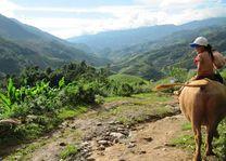 Kind op een buffel in Mu Cang Chai - Mu Cang Chai - Vietnam - foto: Mieke Arendsen
