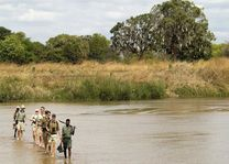 Wandeling tijdens safari - Zambia - foto: Lokaal agent