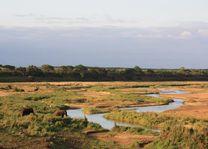 letaba rest camp kruger, uitzicht - kruger - Zuid-Afrika