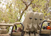 safariwagen Balule Game Reserve - Balule Game Reserve - Zuid-Afrika