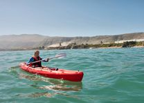 Kayakken bij Hermanus - Hermanus - Zuid-Afrika