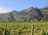 Wastkaap, Franschoek - Franschoek - Zuid-Afrika - foto: Archief