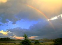 Pilanesberg - Pilanesberg - Zuid-Afrika