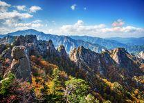 herfst bij Yongajangseong Ridge - Yongajangseong Ridge - Zuid-Korea