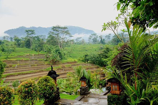 Abian Ayu Villa - tuin - Sidemen - Bali -Indonesie - foto: Abian Ayu Villa