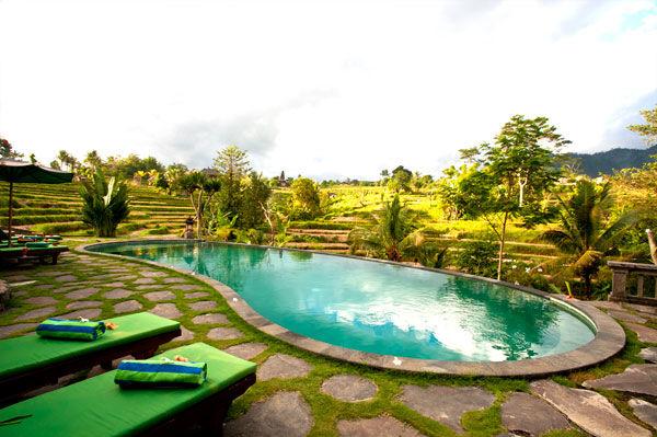 Abian Ayu Villa - zwembad - Sidemen - Bali -Indonesie - foto: Abian Ayu Villa